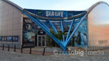 National Sea Life Centre, Birmingham